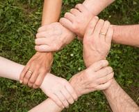 Assistência Social ganha destaque em semestre legislativo